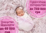 """Центр суррогатного материнства """"SURmamka""""    Стать суррогатной мамой"""