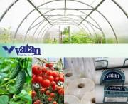 Тепличная плёнка Vatan Plastik Турция. Хорошие цены. Отличное качество