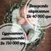 Центр Счастье материнства. Программа суррогатного материнства