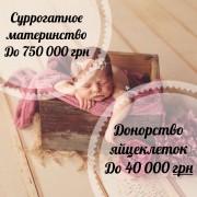 Счастье материнства. Центр репродукции. Статьсуррогатной мамой, донор