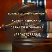 Адвокат по ДТП у Києві. Юридична консультація Київ.