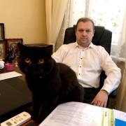 Помощь адвоката в делах о ДТП в Киеве.